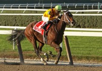 Breeders' Cup Ladies Classic Betting:  Looking at a Royally Awesome Race