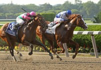 Super Saturday Wagering: Stars Come Out in Breeders' Cup Challenge Races