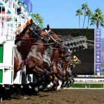 Eight go to the post in Saturday's Gold Cup at Santa Anita, a Breeders' Cup Challenge race. (Photo credit: Breeders' Cup Ltd.)