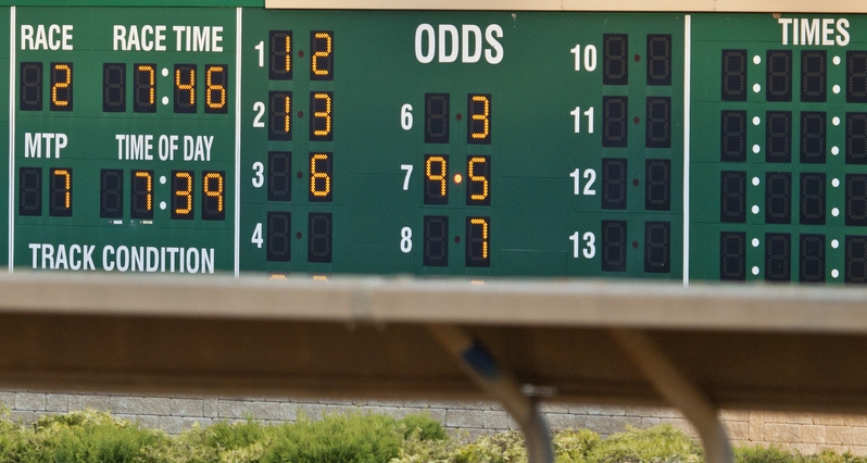 2012 Breeders Cup Mile Future Odds Wise Dan Favored Over