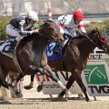 A field of 10 will be gunning for Derby points in the $400,000 Gotham  at Aqueduct (Photo credit: Bigstock.com)