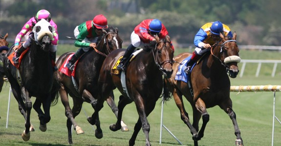 A field of eight will line up in Saturday's Sheepshead Bay over the Belmont Park turf.