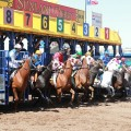 A field of seven line up in Sunday's $800,000 Sunland Derby. (Photo courtesy of Sunland Park)