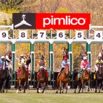 A field of seven will line up in Friday's Black Eyed Susan at PImlico