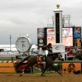 Oxbow wins the $1 million Preakness Stakes with Gary Stevens aboard (photo credit: followhorseracing.com)