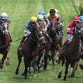 A field of 12 will line up for Saturday's Long Island Handicap on turf at Aqueduct. (© Cheryl Quigley | Dreamstime.com)