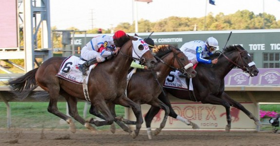 A field of eight line up in Saturday's $1 million Pennsylvania Derby (photo credit: Parx Racing)