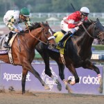 Fort Larned is the defending champion in the Breeders' Cup Classic (Photo credit Breeders' Cup Ltd.)
