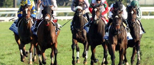 Horse Racing News And Results Free Picks Horse Betting