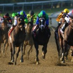 Royal Delta heads for home in the 2012 Breeders' Cup Ladies' Classic. She looks for a repeat this year (Photo credit: Breeders' Cup Ltd.)