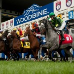 Three graded stakes on turf highlight Sunday's card at Woodbine including the $1 million Ricoh Woodbine Mile.