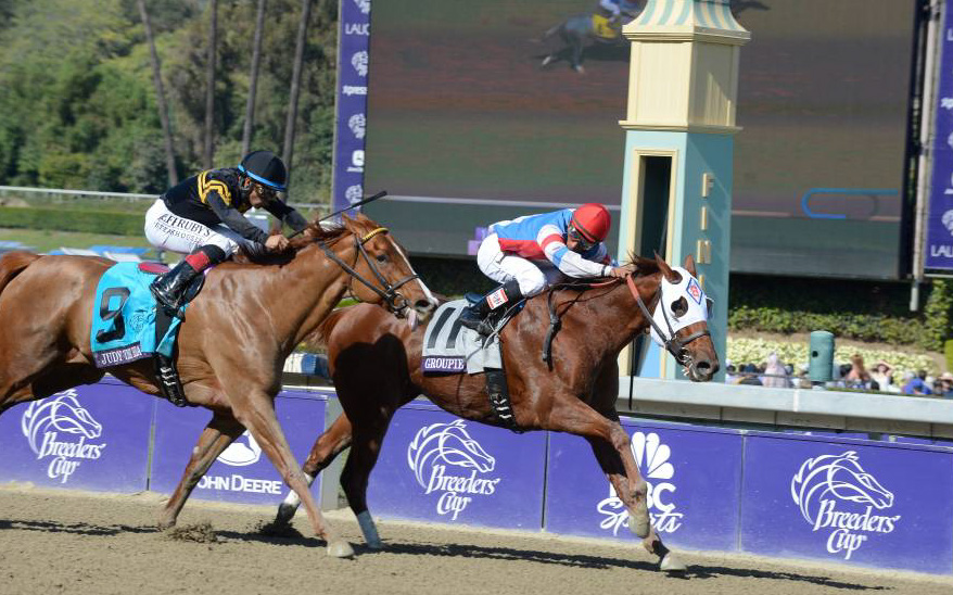 Breeders Cup Winners Square Off In Cigar Mile At Aqueduct
