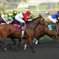 Hollywood Park ran its last Grade 1 race on Saturday. The racetrack closes on Dec. 22 (Photo credit: Biigstock.com