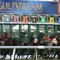 A field of seven lines up in Saturday's Grade 2 Swale at Gulfstream Park. (Photo credit: gulfstreampark.com)
