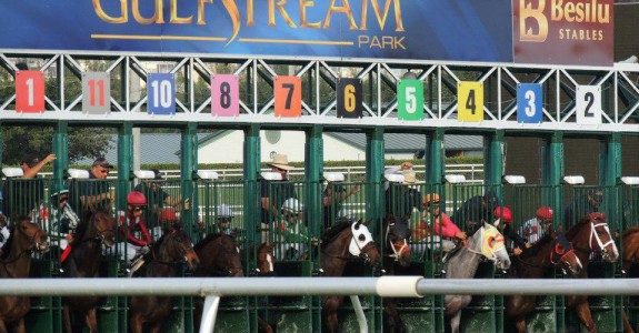 Derby points are up for grabs in Saturday's Holy Bull at Gulfstream Park (Photo credit: gulfstreampark.com)