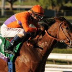 Beholder's Breeders' Cup Classic bid could be stopped by a  fever she spiked after shipping to Kentucky on Monday.   (Photo credit: Breeders' Cup Ltd.)