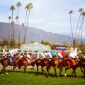 There is over $1 million up for grabs at Santa Anita on Saturday afternoon on Sunshine Millions California Cup Day (photo credit: santaanita.com)
