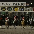 A dozen go in the gate in Saturday's $550,000 Spiral with 85 Derby points up for grabs (photo credit: Turfway Park).