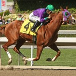 California Chrome, seen here winning the San Felipe, will be the favorite for the Belmont Stakes (Photo credit:  © Cheryl Quigley | Dreamstime.com)