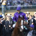 California Chrome is the 3-5  favorite for the Belmont Stakes.(Photo credit: churchilldowns.com).