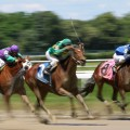 10 go to the post in Monday's feature at Saratoga, the $100,000 Saratoga Dew.  (Photo credit: © Cheryl Quigley | Dreamstime.com)