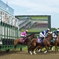Six stakes highlight Haskell Day at Monmouth Park (Photo credit:  © Andrew Kazmierski | Dreamstime.com)