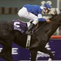 Better Talk Now won the 2004 Breeders' Cup Turf (Photo credit: Breeders' Cup Ltd.)