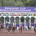 Bayern veered in sharply at the break and went on to win the $5 million Breeders' Cup Classic (Photo credit: Breeders' Cup Ltd.)