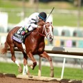 Breeders' Cup Juvenile champion Take Charge Brandi headlines the Starlet. (Photo credit: Breeders' Cup Ltd.)