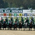 A field of 10 line up in Saturday's $350,000 Tampa Bay Derby (G2) at Tampa Bay Downs (Photo credit: tampabaydowns.com)