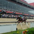 American Pharoah wins the Preakness by seven lengths in the slop. (Photo credit: Maryland Jockey Club).
