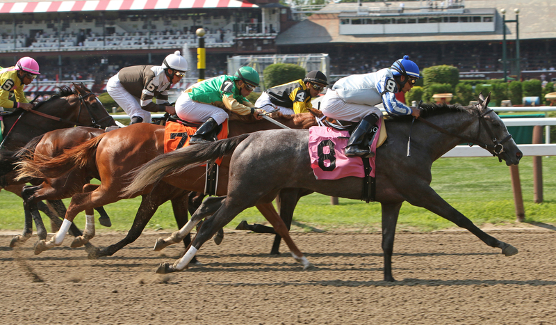 Saratoga Betting Picks Willet Returns In Union Avenue At