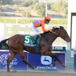 Beholder, the second choice in early wagering for the $5 million Breeders' Cup Classic (G1) will scratch.  (Photo credit: Breeders' Cup Ltd.)