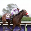 Breeders' Cup Juvenile and Kentucky Derby champ Nyquist will not race in the Belmont Stakes. (Photo credit: Breeders' Cup Ltd.).