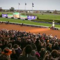 The Breeders' Cup is one of the most popular wagering events in racing in the world. (Photo credit: Breeders' Cup Ltd.).