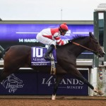 Breeders' Cup Juvenile Fillies  champ Songbird remains undefeated and the betting favorite for the $1 million Breeders' Cup Distaff.(Photo credit: Breeders' Cup Ltd.)