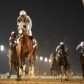 California Chrome is the betting favorite for Saturday's $10 million Dubai World Cup (Photo credit: Dubai Racing Club).