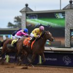 Breeders' Cup Filly & Mare Sprint champ Wavell Avenue is the one to beat in the Shine Again at the Spa. (Photo credit: Breeders' Cup Ltd.)