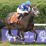 Tepin is the heavy favorite for the Woodbine Mile on Saturday, her final prep before defending her title in the Breeders' Cup Mile (G1). (Photo credit: Breeders' Cup Ltd.)