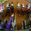 The field breaks out of the gate in the 2015 Breeders' Cup Juvenile Fillies (G1). (Photo credit: Breeders' Cup Ltd.)