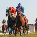 A field of nine will line up in Saturday's Kentucky Turf Cup (G3) at Kentucky Downs. (Photo credit: Kentucky Downs).
