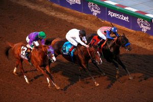 California Chrome (far left) is looking to improve off his third place finish in the 2014 Breeders' Cup Classic. (Photo by © Breeders' Cup/Todd Buchanan 2014)