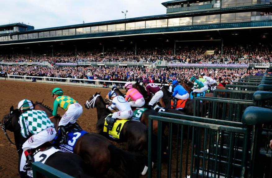 185 Pre-Entries at the 33rd Breeders' Cup - TurfnSport com