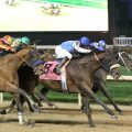 The two two finishers from the 2015 Clark Handicap -Effinex and Hoppertunity are back to face off in this year's edition. (Photo credit: Churchill Downs).