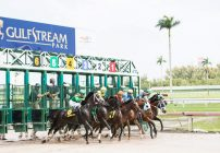 $16 Million Pegasus World Cup Attracts World's Best