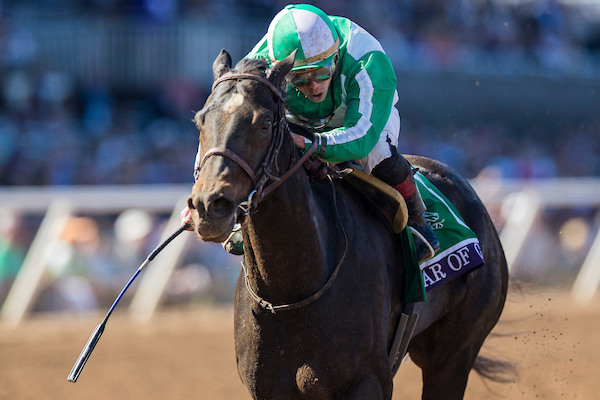 Breeders Cup Filly Amp Mare Sprint Winner Bar Of Gold Goes