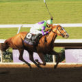 Good Magic Tops First NTRA Thoroughbred Poll