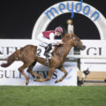 Championship and Ertijaal Defend Titles at Dubai World Cup Carnival