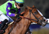 Kentucky Derby Future Wager Pool 2 Odds