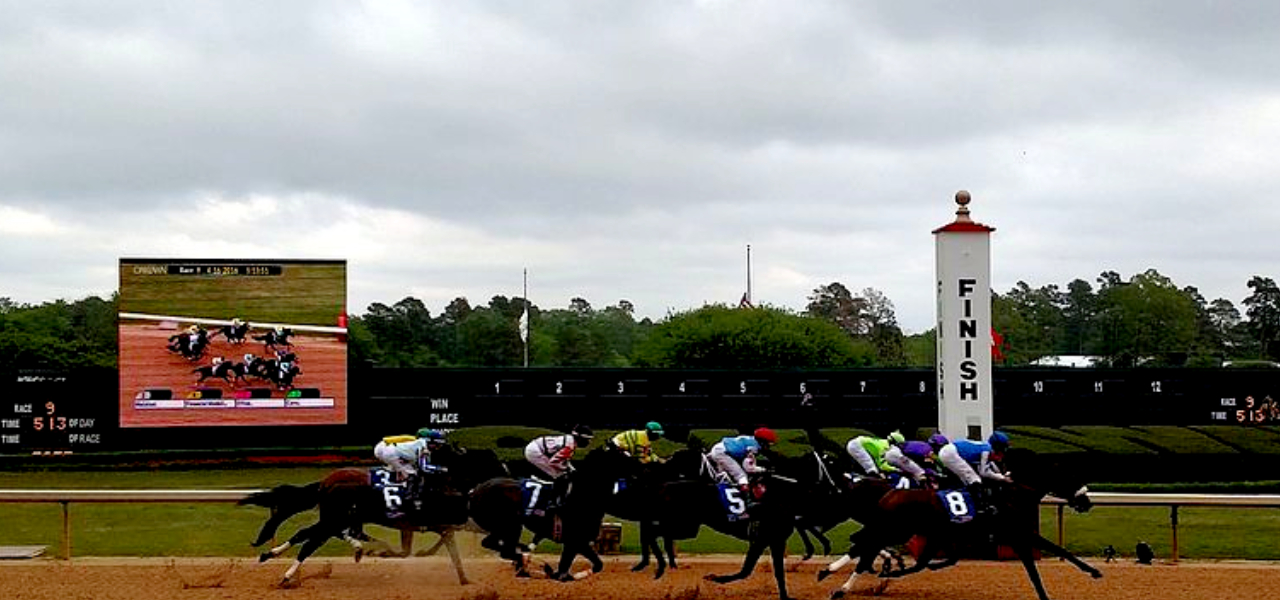 Horse Racing On Oaklawn Park Race Track Arkansas